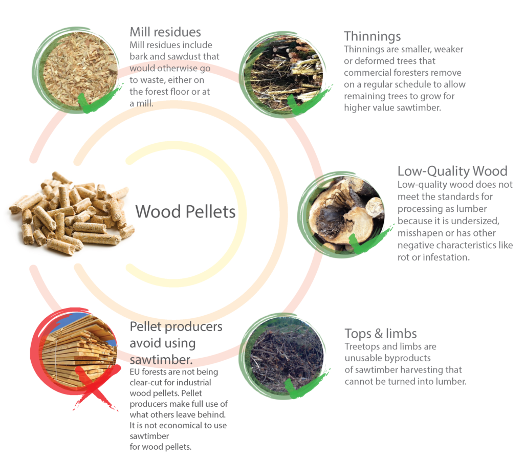 Which Biomass Materials Are Used ? – European Pellet Council